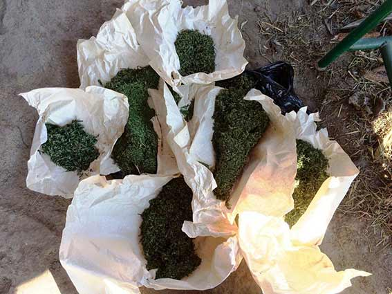 Мешканець Тиврівського району із кримінальним минулим зберігав в своїй оселі 3 кг коноплі
