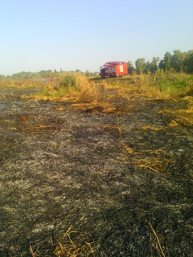 На Вінничині через необережне поводження невідомих з вогнем горіло торфовище та суха трава