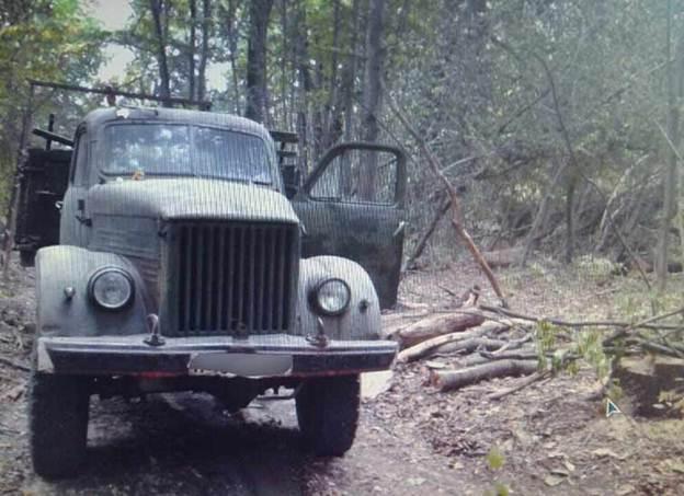 У Вінницькому районі затримали трьох чоловіків, які займались незаконною вирубкою дубів
