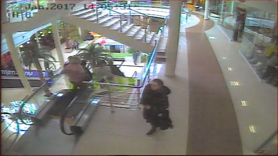 Поліція розшукує крадійку, яка поцупила з торгівельного центру сумку вартістю майже 6 тис. грн.