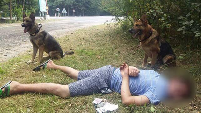 """Неподалік Вінниці поліція, кінологи та службові собаки """"прочісували"""" ліс, аби знайти грабіжника"""