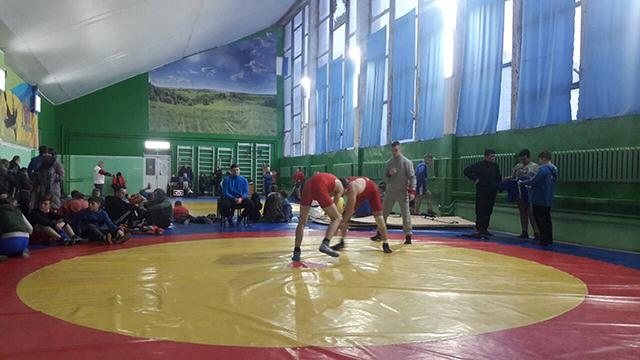 У Вінниці відбувся відкритий чемпіонат міста з вільної боротьби