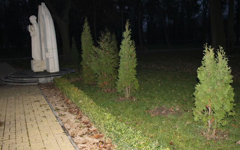 Поблизу пам'ятного знаку Жертвам Голодомору крадуть зелені насадження. Вже вдруге за місяць