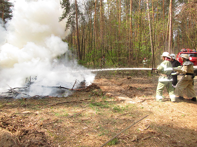 Вінницькі рятувальники разом із лісівниками провели спільні навчання з ліквідації лісової пожежі