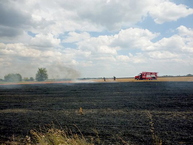 На Вінниччині почастішали випадки загорання стерні в полі через необережне поводження з вогнем