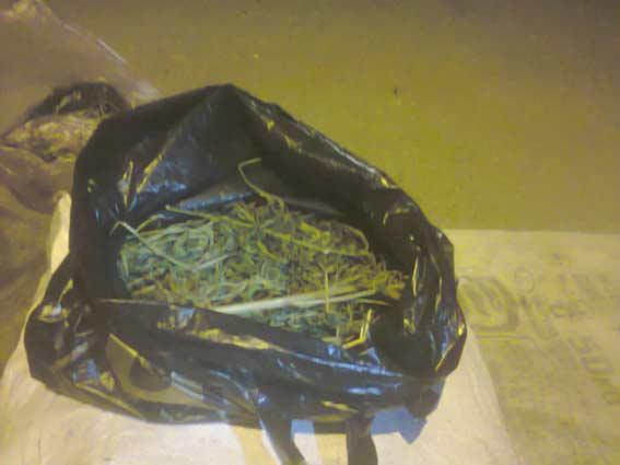 На Вінниччині затримали житомирян з двома кілограмами коноплі
