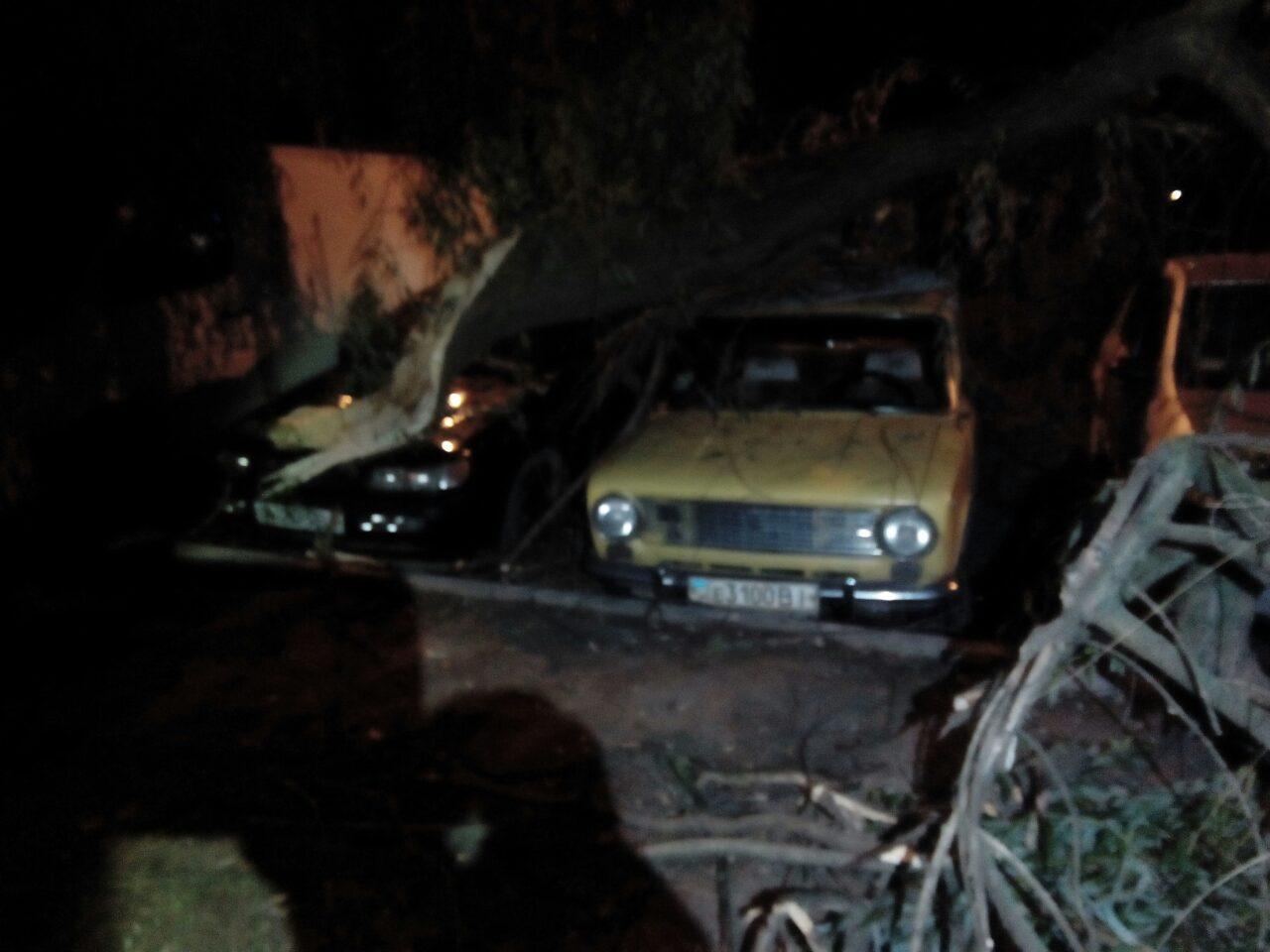 У Вінниці через негоду на авто впало дерево