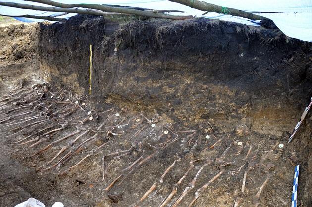 Під Вінницею виявлено масове поховання воїнів УНР