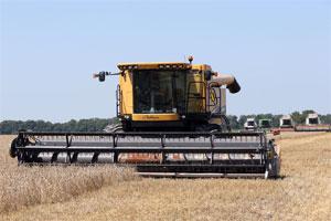 Вінницька область - один з ключових аграрних регіонів України