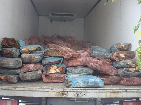 В Літинському районі працівники міліції зупинили вантажівку, водій якої перевозив 6 тонн шлунків тваринного походження.