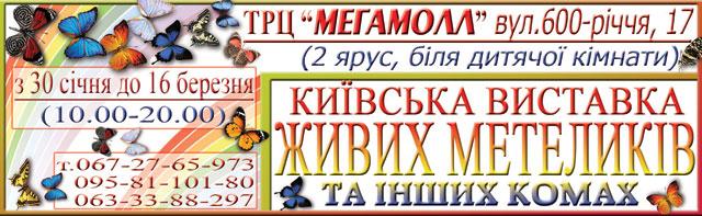 Завтра у Вінниці починає роботу київська виставка живих метеликів та інших комах